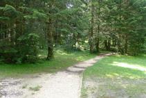 Desde este punto, a unos 15m a la izquierda hay la tarima de madera.