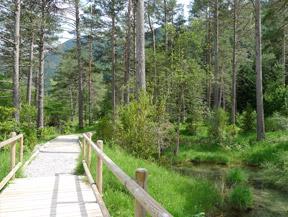 Sendero accesible del Cornato en valle de Pineta