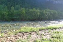 Río Arazas.