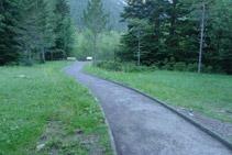 Avanzamos por entre bosques y prados.