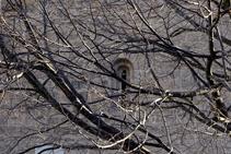 Ramaje y ventana de la iglesia de Sant Martí.