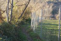 Avanzamos entre el río Cantó y una valla metálica.