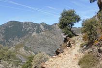 Camino de la Borda del Mas.