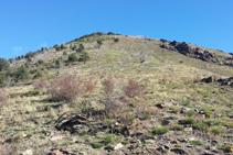 Caminamos lomo arriba en dirección N-NE, evitando los árboles.