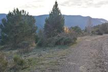 Tomamos un sendero muy poco definido a la izquierda.