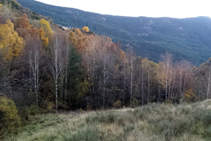Prado de siega y bosque de ribera.