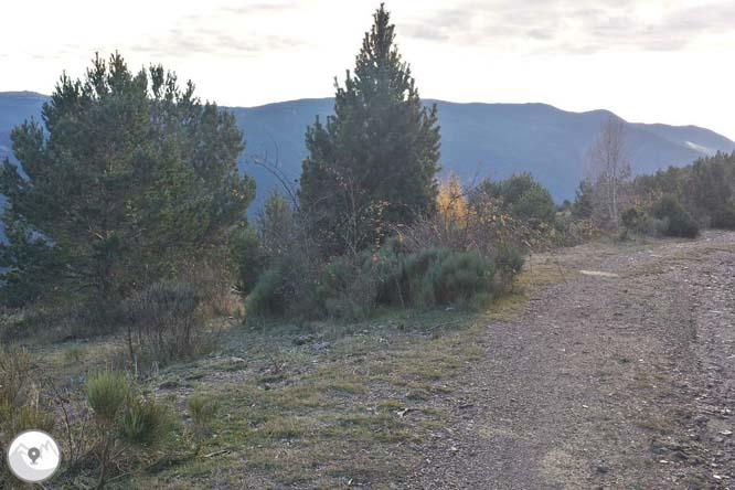 Torreta del Orri (2.439m) desde Llagunes 1