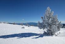 La parte alta del macizo del Orri recibe abundantes nevadas a lo largo del invierno.