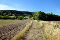Pasamos por entre unos campos.