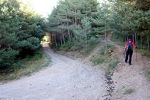 En una curva coincidimos con una pista ancha. Nosotros continuamos por el sendero (derecha).