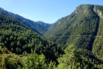 Valle del torrente de Fontllebrera.