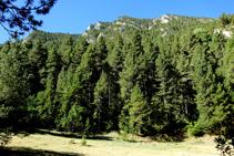 La vertiente occidental del valle.