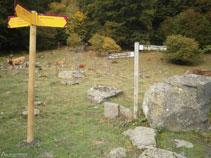 Las señalizaciones nos indican el camino para llegar hasta la cascada de Pomèro.