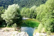 Las aguas verdes del Llobregat.