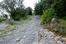 El sendero en Sant Quirze.