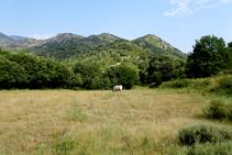 Los prados rodean la ermita de Sant Quirze de Pedret.