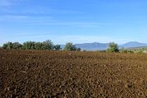 Campos de cultivo en el volcán de la Crosa.