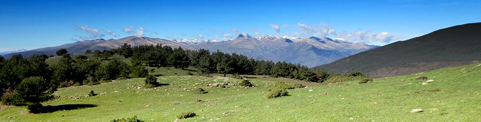 Vuelta a la sierra de Freixa desde Llagunes