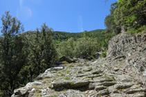 Camino empedrado a las bordas de Arnui.