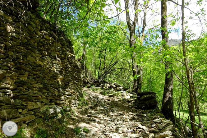 Vuelta a los campos de Arnui desde Llavorsí 1