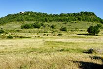 Sobre nuestras cabezas vemos la imponente Rocallarga, que más tarde visitaremos.