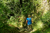 El camino que baja desde la ermita de Sant Corneli, frondoso y bien marcado.