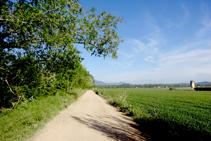 Seguimos la pista entre el Onyar y los campos de cultivo.