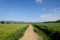 El sendero discurre junto a la acequia de Banyacans.